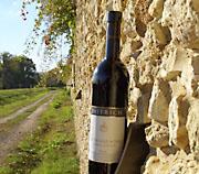 Weinhof Dietrich mit Weinbar